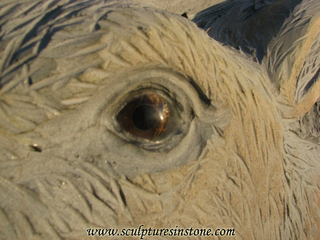 Stone Elk Sculpture close up of eye